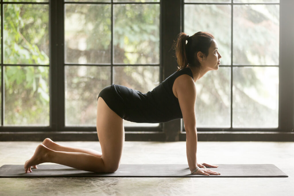 10 Simple Stretches for Lower Back Pain Relief [2021]